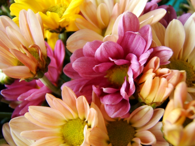 Flowers – the perfect gift for Mothers' Day!