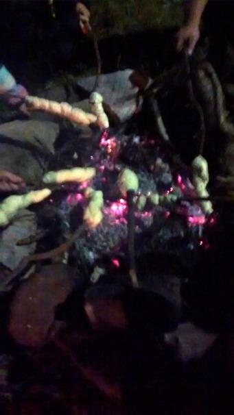 Camp Fire Cooking Damper