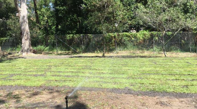 New Lawn Umina Cub Hall